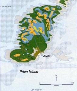 Prion Island, baie des Isles, Georgie du Sud.