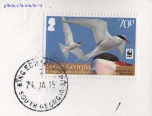 Tampon poste Grytviken copie